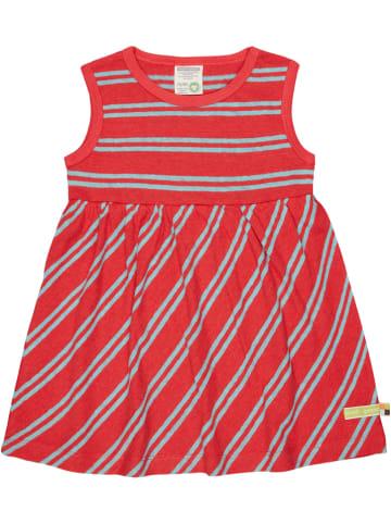 Loud + proud Sukienka w kolorze czerwono-błękitnym