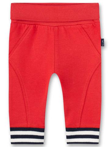 Sanetta Kidswear Spodnie dresowe w kolorze czerwonym