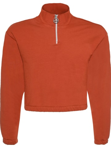 Blue Effect Sweatshirt rood