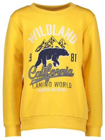 Lamino Sweatshirt selected by Nadine Weckerle