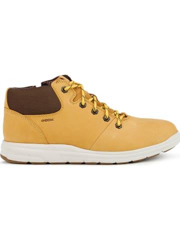 "Geox Leder-Boots ""Hallson"" in Gelb"