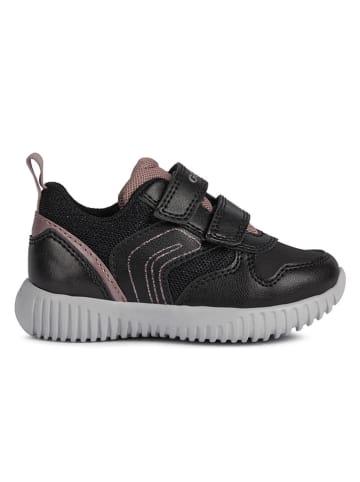Geox Sneakersy w kolorze czarnym