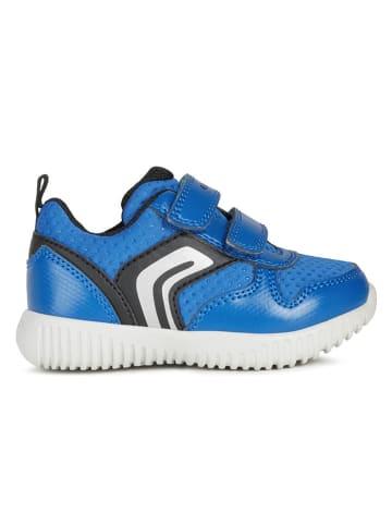 Geox Sneakersy w kolorze niebieskim