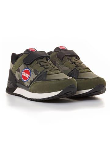 COLMAR Sneakers in Khaki