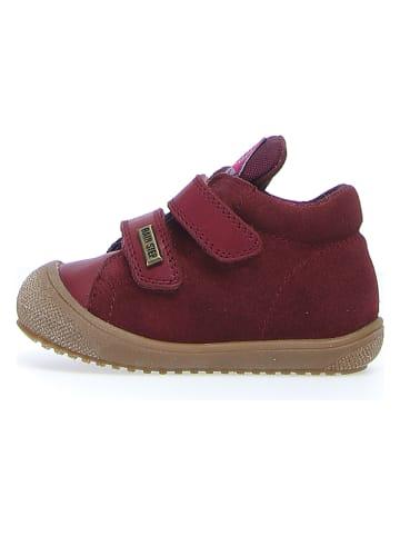 """Naturino Leder-Sneakers """"Brunt"""" in Rot"""