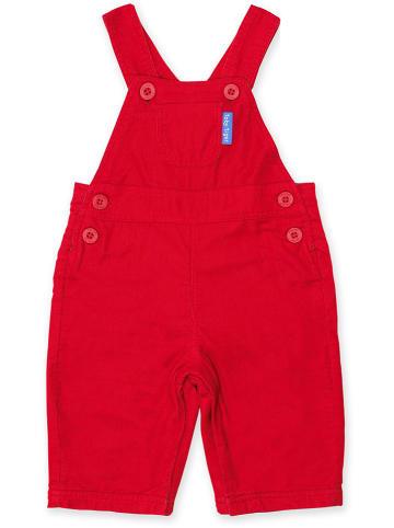 Toby Tiger Ogrodniczki sztruksowe w kolorze czerwonym