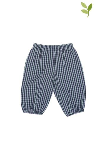 Serendipity Spodnie w kolorze granatowym