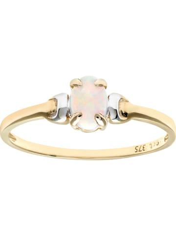 Revoni Witgouden/gouden ring met edelsteen