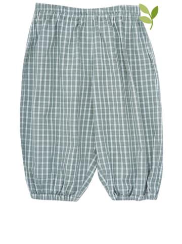 Serendipity Spodnie w kolorze zielono-białym