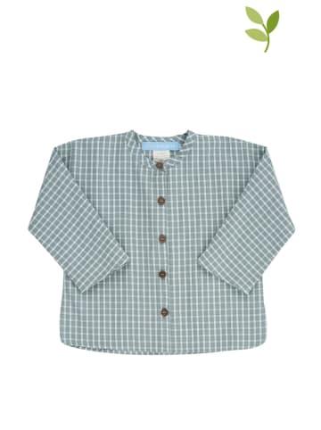 Serendipity Koszula w kolorze niebiesko-białym