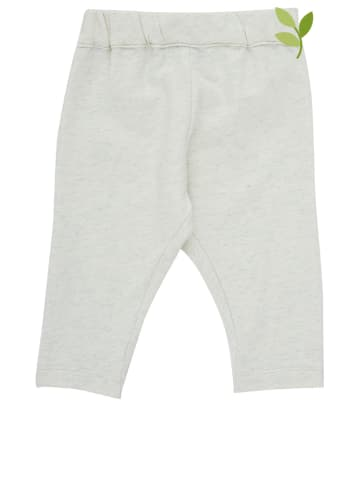 Serendipity Spodnie w kolorze miętowym