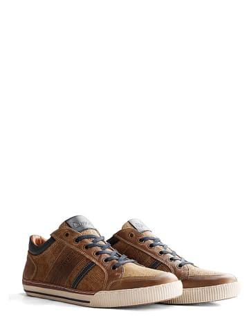 """NoGRZ Leren sneakers """"W. Buckland"""" lichtbruin"""