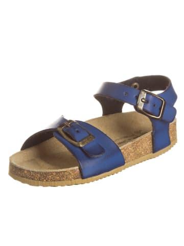 BIO PINGÜIN Sandalen in Blau