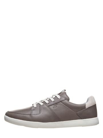 """Boxfresh Leder-Sneakers """"Cladd"""" in Taupe"""