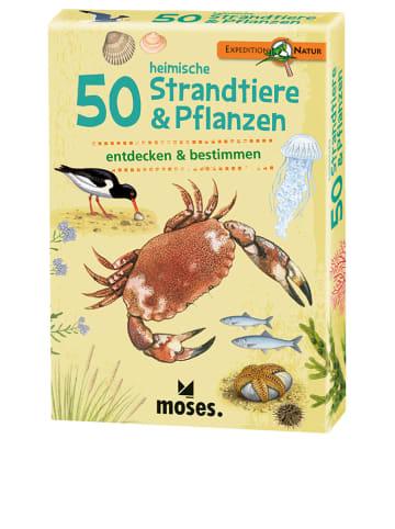 """Moses. Kartenset """"50 heimische Strandtiere & Pflanzen"""" - ab 6 Jahren"""