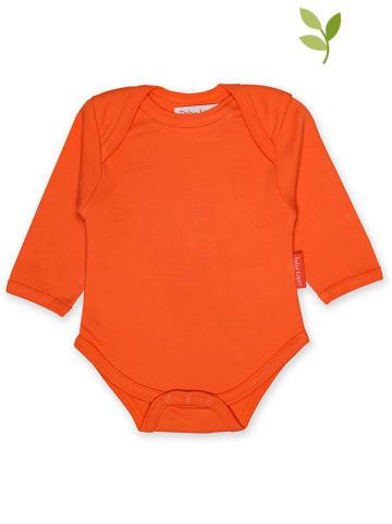 Toby Tiger Body in Orange