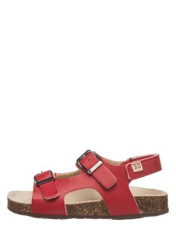 TREVIRGOLAZERO Sandalen rood