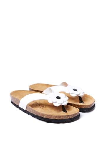 Mandel Japonki w kolorze białym