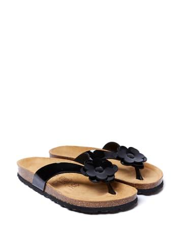 Mandel Japonki w kolorze czarnym