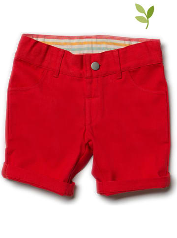 Little Green Radicals Short rood