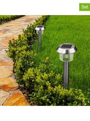 "Lumisky 8er-Set: LED-Solar-Gartenstecker ""Alesia"" in Silber - (H)39 cm"