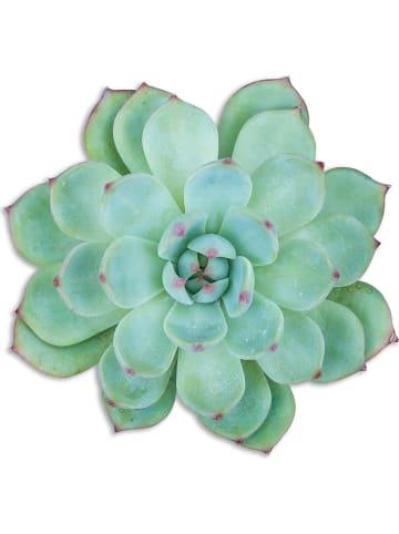 """Madre Selva Podkładka stołowa """"Green Suculenta"""" w kolorze zielonym - 50 x 40 cm"""