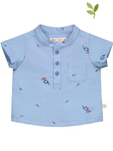 Smitten Organic Koszulka w kolorze błękitnym