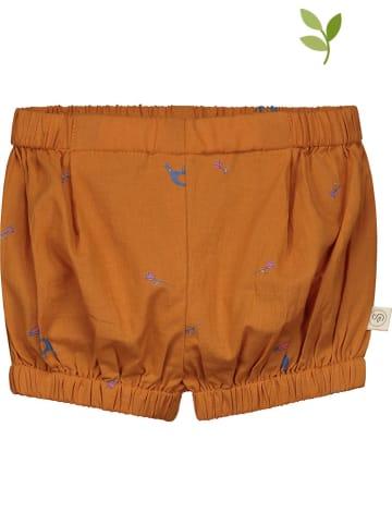 Smitten Organic Shorts in Braun
