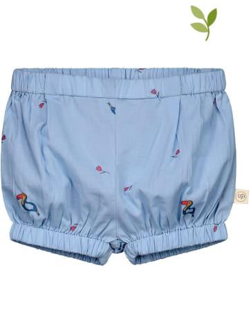 Smitten Organic Short blauw