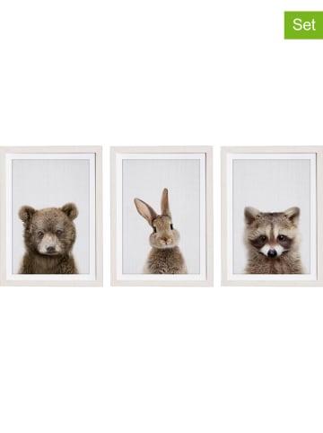 "Little nice things 3er-Set: Kunstdrucke ""Great Animals"" - (B)30 x (H)40 cm"