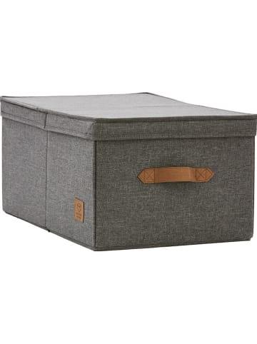 STORE IT Ordnungsbox in Anthrazit - (B)33 x (H)24 x (T)50 cm