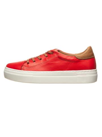 Andrea Conti Leren sneakers rood/lichtbruin