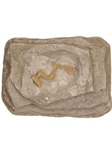 SUNNYSUE Zestaw archeologiczny