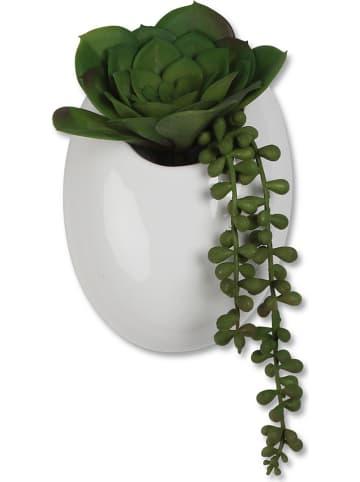 Deco Lorrie Sztuczna roślina z doniczką - wys. 18 x Ø 11 cm