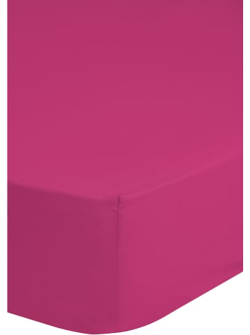 Good Morning Spannbettlaken in Pink