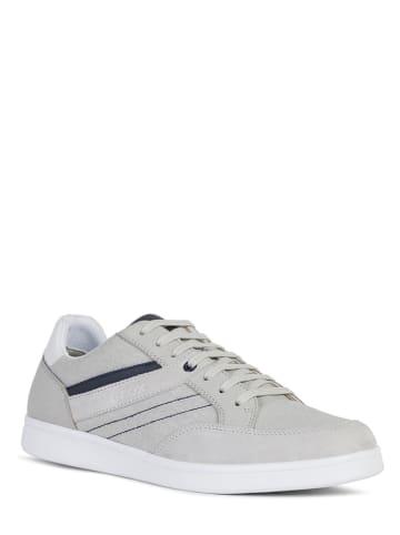 "Geox Sneakers ""Warrens"" in Grau"