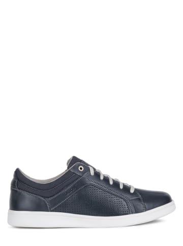 "Geox Sneakers ""Warrens"" donkerblauw"