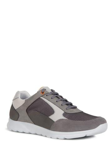 """Geox Sneakers """"Erast"""" antraciet"""