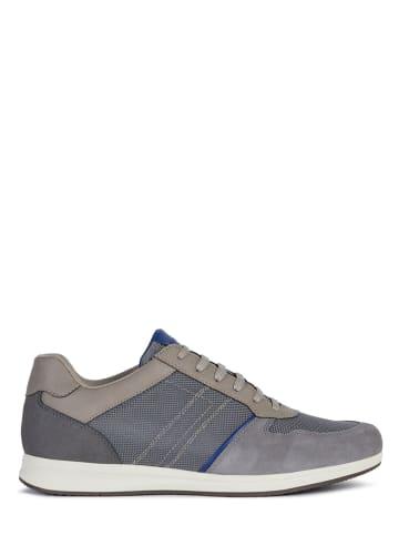 "Geox Sneakers ""Avery"" antraciet"