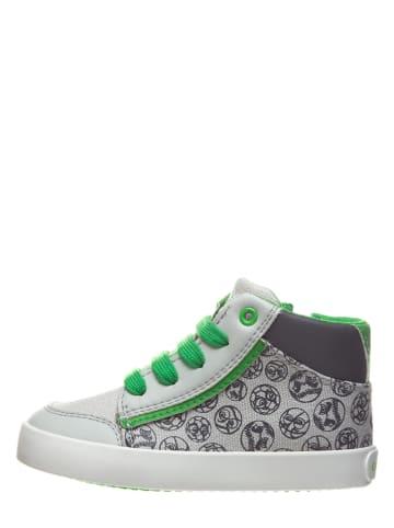 "Geox Sneakers ""Gisli"" in Grau/ Grün"