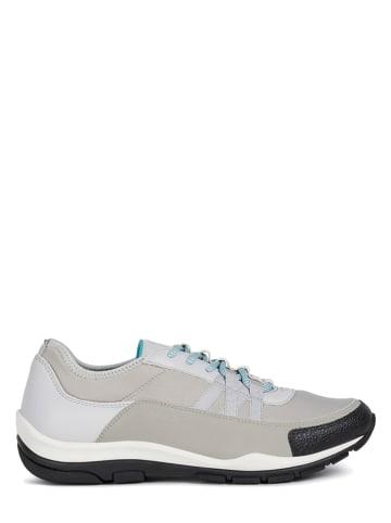 """Geox Sneakers """"Kander"""" lichtgrijs"""