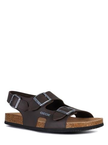 """Geox Sandały """"Ghita"""" w kolorze ciemnobrązowym"""