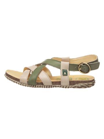 El Naturalista Skórzane sandały w kolorze khaki