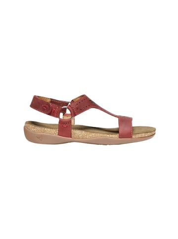 "Keen Leren sandalen ""Kaci Ana T"" bordeaux"