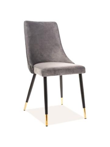 SIGNAL Stuhl in Grau/ Gold/ Schwarz - (B)45 x (H)92 x (T)49 cm