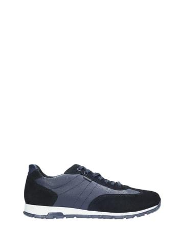 Wojas Leder-Sneakers in Dunkelblau