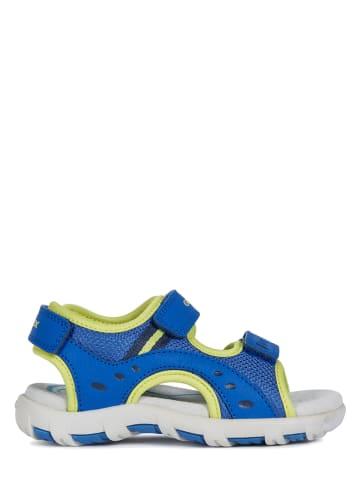 """Geox Sandalen """"Pianeta"""" blauw"""