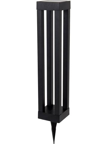 Näve Ledsolartuinsteker zwart - (H)54,4 cm