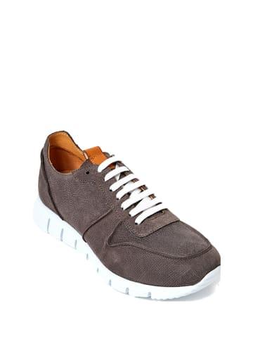 British Passport Leren sneakers bruin