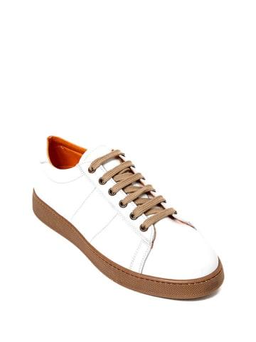 British Passport Leren sneakers wit